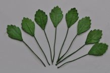 LIGHT GREEN OBOVATE SERRATED LEAVES (16mm) Mulberry Paper leaves